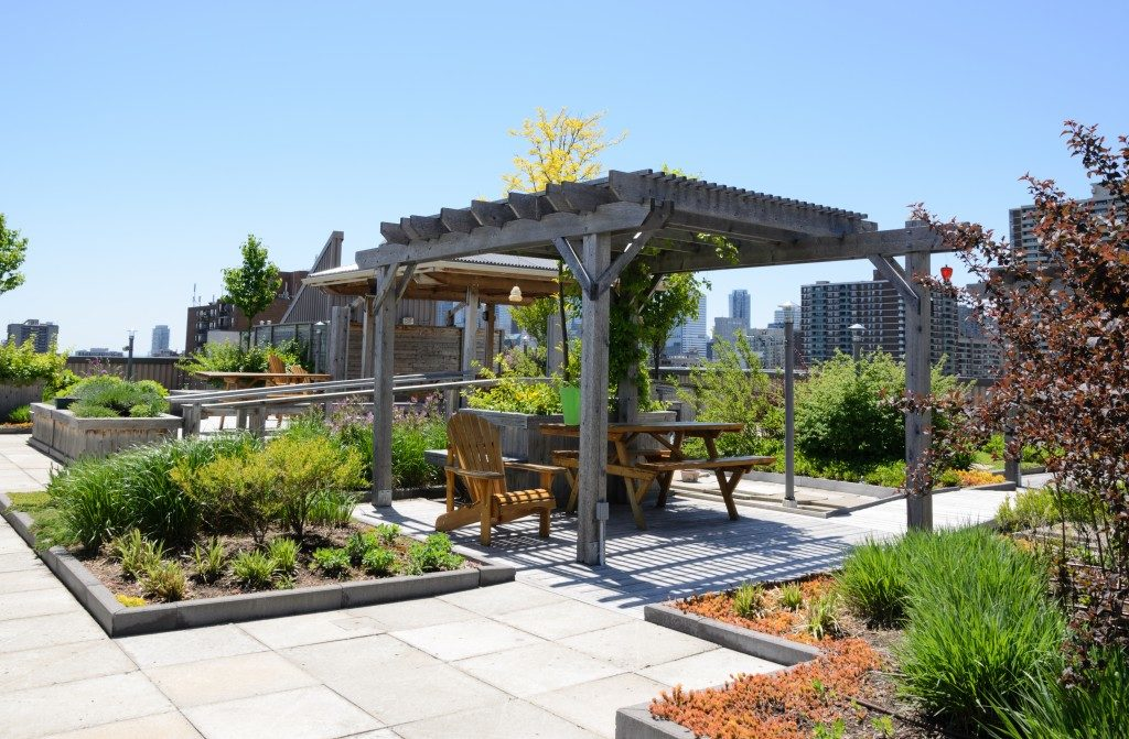 landscaping on rooftop garden