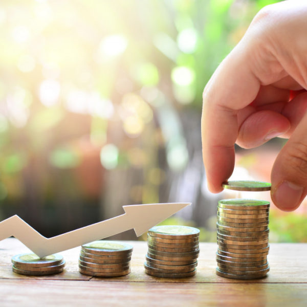 How to Maximize Your Assets and Guarantee a Good Return on Investment